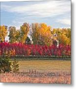 Rural Country Autumn Scenic View Metal Print