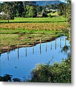 Rural Landscape After Rain Metal Print
