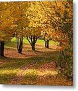 Rural Scene In Autumn Metal Print