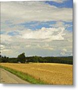 Rural Scene, Near Villingen-schwenningen Metal Print