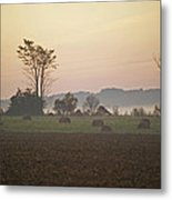 Rural Sunrise Metal Print