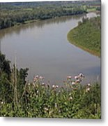 Russian Thistle By The North Saskatchewan River Metal Print