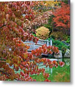 Rust Colored Leaves Over Autumn Pond Metal Print