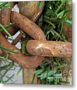 Rusted Links Metal Print
