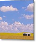 Rye, Canola And Grainery, Bruxelles Metal Print