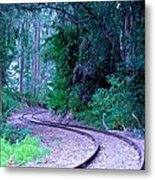 S Curve In The Forest Metal Print