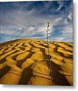 Sahara Desert, Tunisia, Africa Metal Print