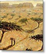 Sahelian Landscape Metal Print by Tilly Willis