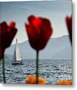 Sailing Boat And Tulip Metal Print