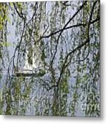 Sailing Boat Behind Tree Branches Metal Print