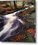 Sally Gap, County Wicklow, Ireland Metal Print