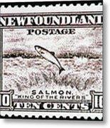 Salmon King Of The Rivers Metal Print