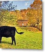Salt Box Farm Metal Print