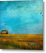 Salt Marsh Metal Print by Michael Petrizzo