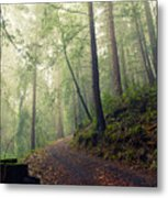 Sam Mcdonald County Park Metal Print