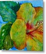 San Diego Hibiscus Study I Underwater Metal Print
