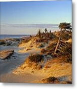 Sand Dunes At Sunset, Lake Huron Metal Print
