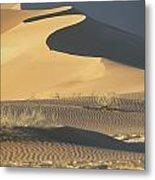 Sand Dunes In Namib Desert Metal Print