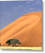 Sand Dunes, Sossusvlei Metal Print