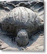 Sand Turtle Metal Print