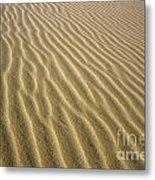 Sandhills Metal Print