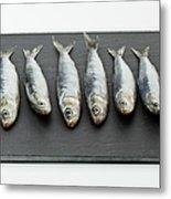 Sardines On Chopping Board Metal Print