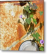 Say Goodbye Metal Print by Carolyn Marshall