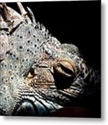 Scales And Spikes Metal Print