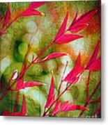 Scarlet Metal Print