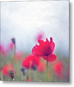 Scarlet Poppies In Painterly Style Metal Print