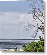 Scenic View At Emerson Point Metal Print