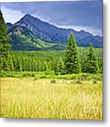 Scenic View In Canadian Rockies Metal Print by Elena Elisseeva