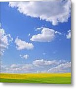 Scenic View Of Meadow And Canola Crop Metal Print