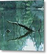 Scenic Woodland Lake Metal Print