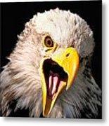 Screaming Eagle II Black Metal Print
