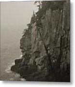 Sea Cliff At Quoddy Head  Metal Print