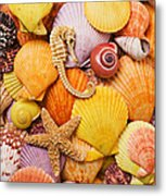 Sea Horse Starfish And Seashells  Metal Print by Garry Gay