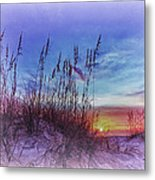 Sea Oats 5 Metal Print