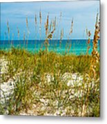 Sea Oats Gulf - Destin Metal Print