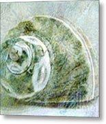 Sea Shell I Metal Print