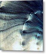 Sea Shell Metal Print