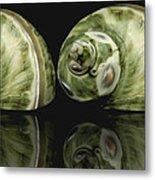 Sea Shells Photography Still Life Metal Print