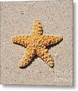 Sea Star Metal Print
