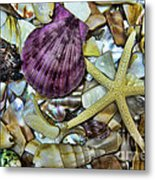 Sea Treasure - Landscape Metal Print