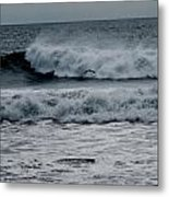 Seagull And Surf Metal Print