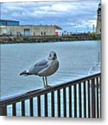 Seagull At Lighthouse Metal Print
