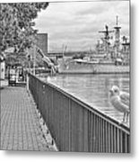 Seagull At The Naval And Military Park Metal Print