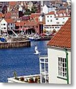 Seagull At Whitby Harbor Metal Print by Axiom Photographic