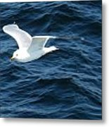 Seagull Flying Over The Waves Wc  Metal Print