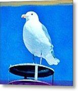 Seagull Fun Colors Metal Print